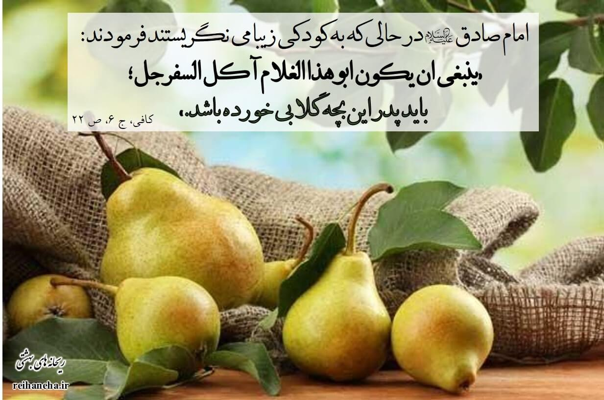 Image result for ‫قبل از نطفه‬‎